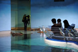 Top level - Sharjah Aquarium