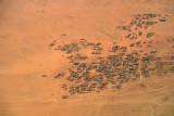 Desert village, Sudan