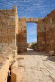 LibyaDec10 0795.jpg