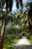 Center of Paradise Island