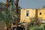 Nile Cruise Luxor-Isna