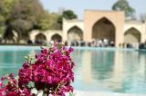 Flowers, Chehel Sotun Palace