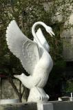 Swan over an empty fountain