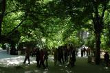 Bagh-e Eram - Eram Garden, surrounding the palace, Shiraz