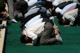 Noontime prayers, Tomb of Sa'di