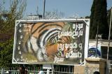 Shiraz zoo