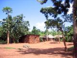 The road back to Jinja passes lots of small huts