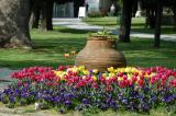 Tulips and a large pottery vessel