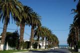 Rue Dag Hammarskjoeld, Carthage-Hannibal, Tunis, Tunisia