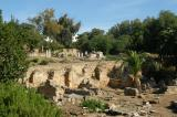 Ruins of Ancient Carthage
