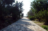 Roman road leading to the Antonine Baths - no photos to the left, site of the Presidential Palace