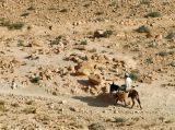 Boy on a donkey crossing the desert