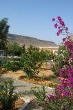 Garden, Hotel Mabrouk