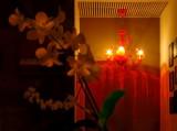 Cordon Rouge Roma  lights