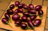 Indian eggplant - preferred