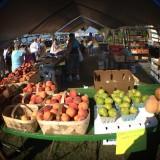 Weekend Farmer's Market