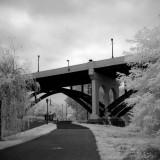 Trail Under 113 Bridge