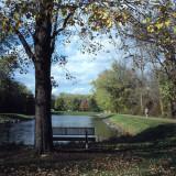 Pond & Bench