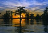 Louisiana kayaking