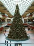 Galleria Tree