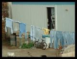 Neighbors laundry on Saturday