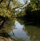 The River - 120