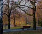 Park at evening