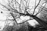 Drought Season_ 109.jpg