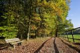 Taunus (Autumn 2008)