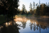 Misty morning over dam at Thistle Hill