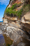 Sandstone at Dee Why Beach