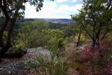 View towards Hawkesbury