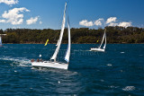 Yacht race on Sydney Harbour