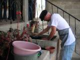 Mateo scrubbing