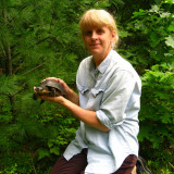 Julie with a Blandings Turtle