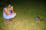 Julie feeding the racoon