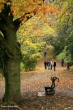 Enjoying The Last of Autumn