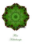 9 - Woods Fern Kaleidoscope Card