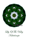 13 - Lily Of The Valley Kaleidoscope Card