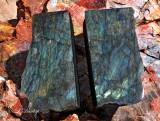 Labradorite On Petrified Wood