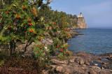 25.31 - Split Rock Lighthouse:  Early Autumn With Mountain Ash