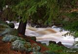 57 - Spring Whitewater on Black River