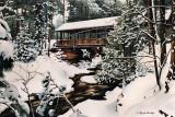 502 - Northwoods Winter