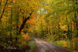 83 - Sawtooth Mountains: Early Autumn Glow