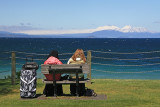 Taupo Tourists, overlooking, Lake Taupo.