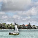 Waitemata Harbour, Auckland.