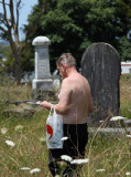 Out shopping... saw this fellow.. walking through the graves ?