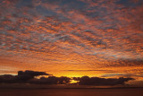 Sunrise 05.01.2011 Whangaparaoa. NZ