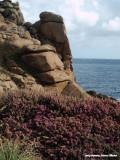 Roze graniet kust