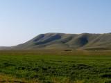 Hills over vinyards